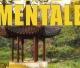 Come gestire le emozioni, arriva l'Aikido Mentale, per imparare a prendere le decisioni più giuste